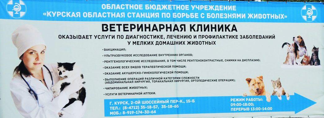 Больница 4-я городская клиническая больница имени н.е.савченко